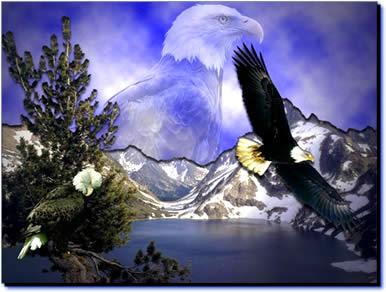 Auto-estima - A Águia recomeçando a vida - Mensagem Power Point